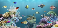 aniPet Aquarium LiveWallpaper 2.4